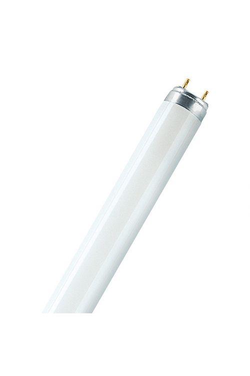 Fluorescenčna sijalka Skywhite, Osram (T8, hladno bela, 36 W, dolžina: 120 cm, energetski razred: A)