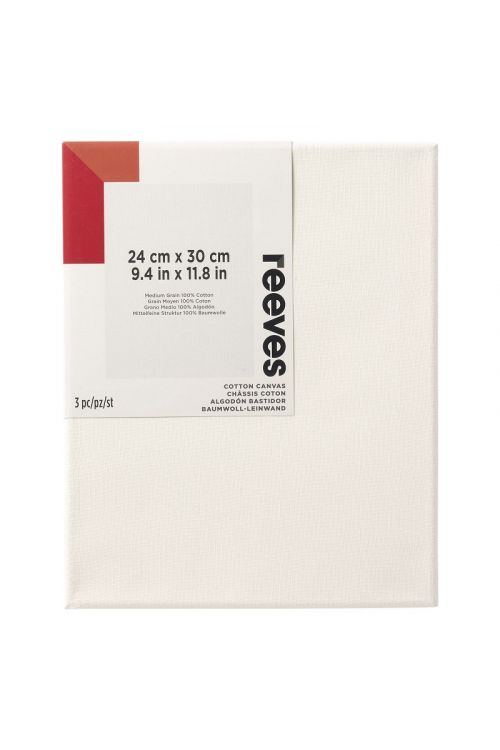 """Set slikarskih platen Reeves """"Gallery"""" (24 x 30, 3 kosi)"""
