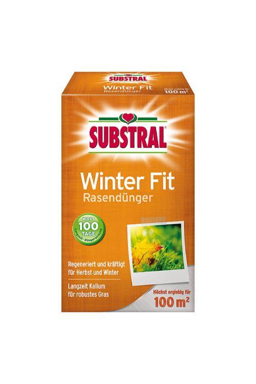 Gnojilo za travo Substral Winter Fit (2 kg)