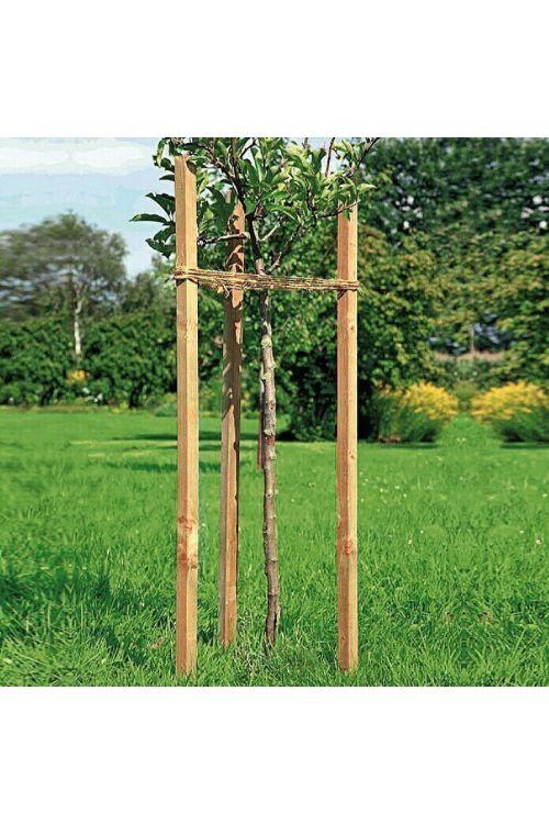 Kvadratni leseni steber (4 x 4 x 120 cm, bor)