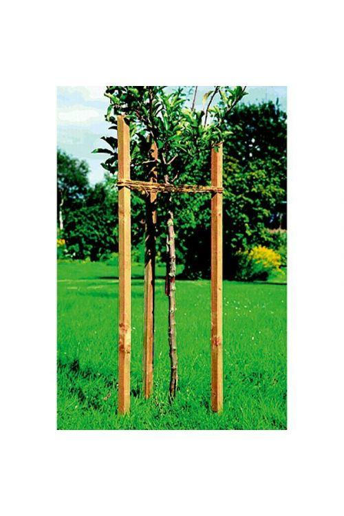 Kvadratni leseni steber (4 x 4 x 200 cm, bor)