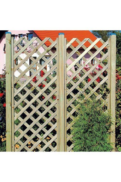 Opora za rastline Diagonal (60 x 180 cm)