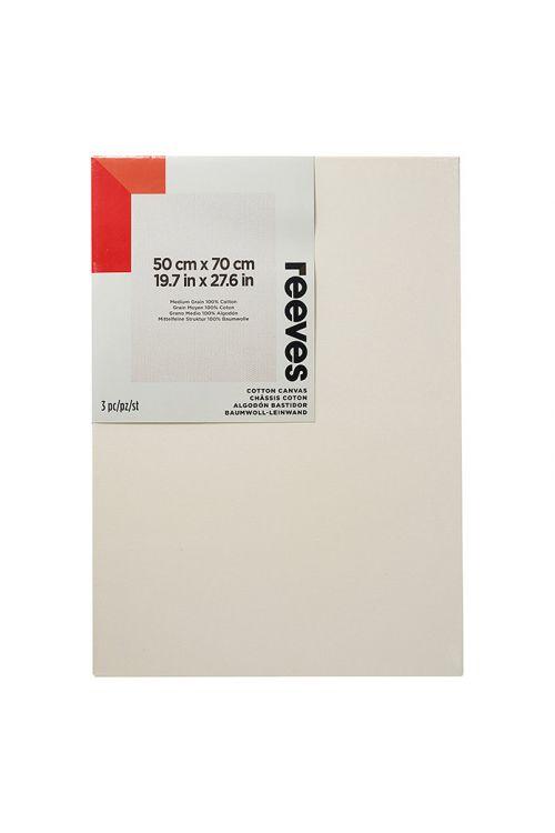 Okvir s platnom Reeves Artists (50 x 70 cm, 3 kosi, bombaž, trikrat prebarvan)
