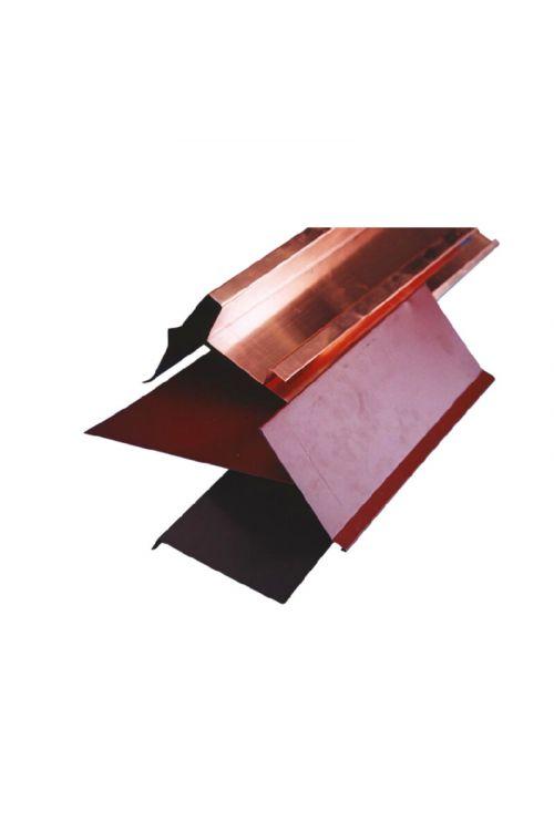 Odkapna obroba za Tegolo Canadese (2 m, aluminij, rjava)