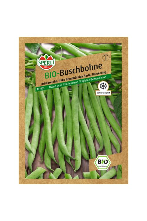Bio seme fižol Maxi Sperli (nizki, zeleni)