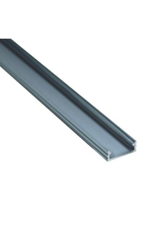 ALU PROFIL ZA LED TRAK (2 m, nadgradni, mat, dimenzije 16 x 6 mm)