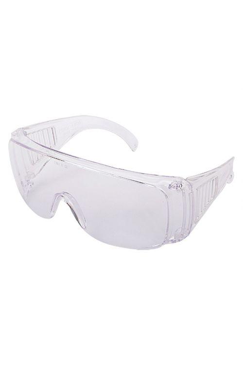 Zaščitna očala Wisent (prozorna)