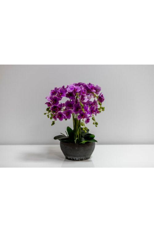 Umetna orhideja v keramičnem lončku (bela/vijolična, višina: 45 cm)