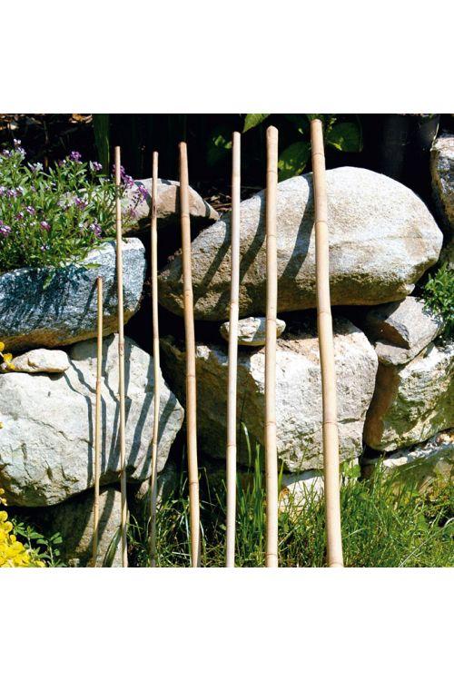 Bambusova palica Bellissa (240 cm)