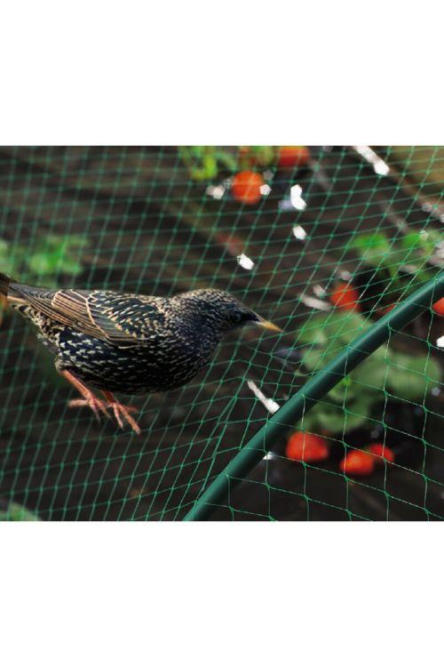 Zaščitna mreža proti pticam Nortene (4 x 10 m)