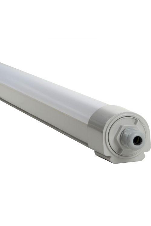 LED svetilka za vlažne prostore PRO (50 W, 5.250 lm, 4.000 K, IP65, premer 6 cm, dolžina 163 cm)