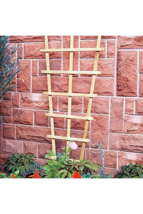 Opora za rastline Trapez (brez okvirja, Š 60 x V 150 cm, bor)