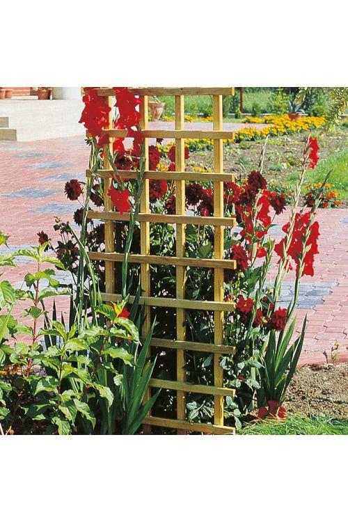 Opora za rastline, pravokotna (brez okvirja, Š x V: 60 x 180 cm)