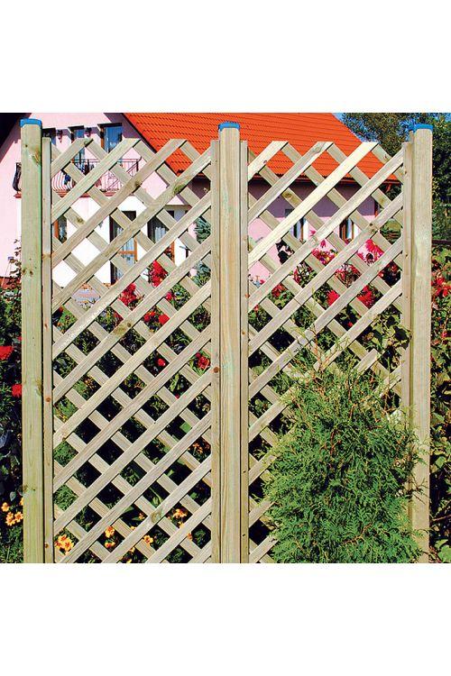 Opora za rastline Diagonal (Š x V: 60 x 180 cm)