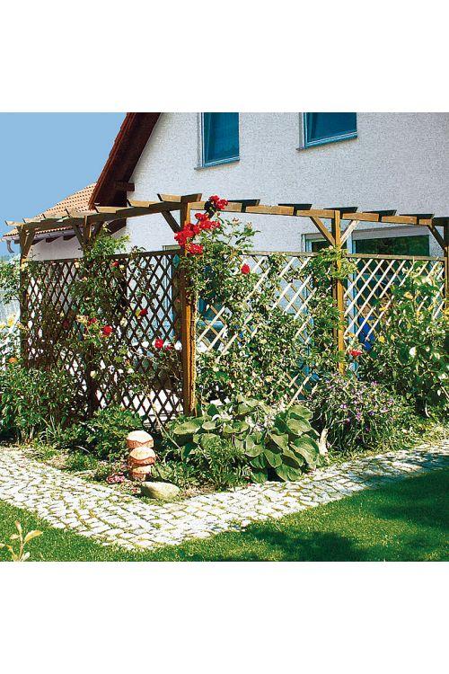 Opora za rastline (Š x V: Š 180 x V 180 cm)