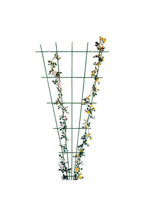 Opora za vrtnice Bellissa (150 x 75 cm, pahljača, PE-premaz, zelene barve)